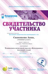 chapter_member_Sannikova_Anna